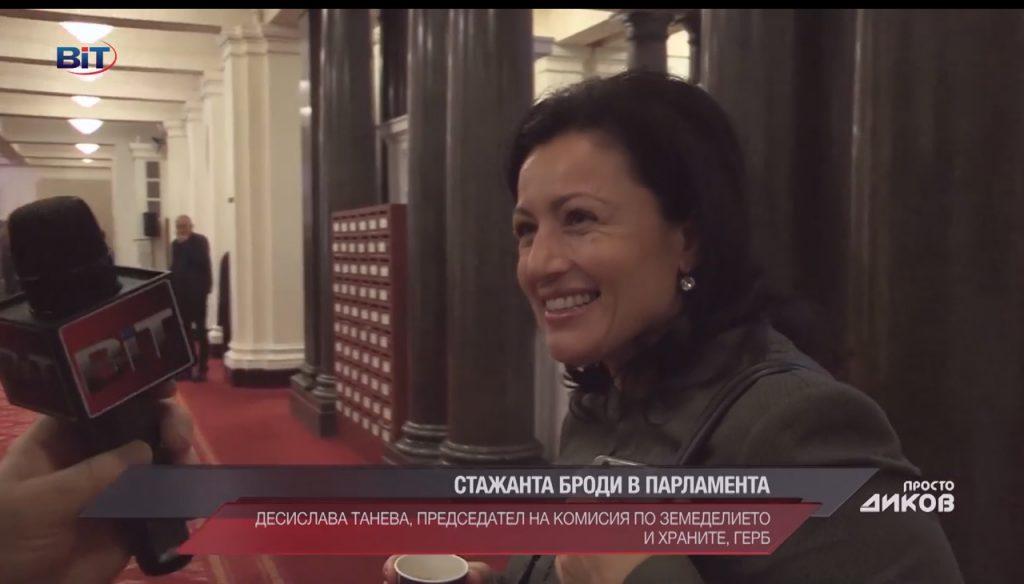 Десислава Танева: Моят подпис спря изплащането на високите субсидии за тикви; Автор: Просто Диков; Видео: BiT, 19.11.2017 г.