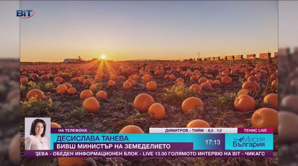 Право на отговор: Десислава Танева за тиквите и тиквениците; Автор: еМисия България; Видео: BiT, 13.11.2017 г.